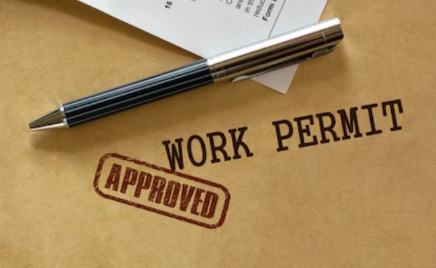 Apply for licenses and permits